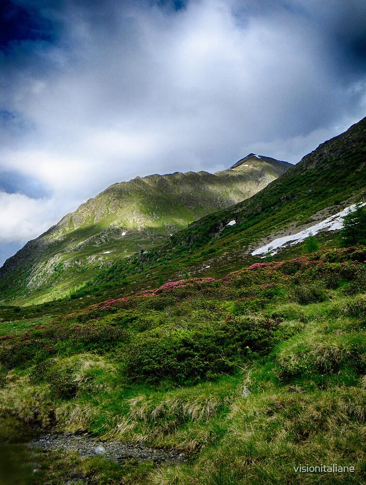 Alpine meadow landscape color fine art photography - La su sulle montagne by visionitaliane