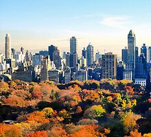 New York  by mafmafmaf