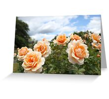 Rose: Scent to Remember Greeting Card