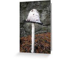 Magic Irish Mushrooms - 3 Greeting Card