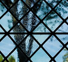 The Garden Through Window Diamonds by Georgia Mizuleva