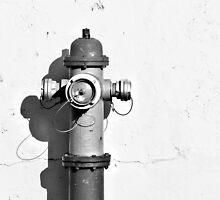 Fire Hydrant  by dkaranouh