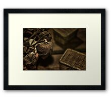 flowers of passing 2 Framed Print
