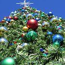 Let the festivities begin by Ronee van Deemter