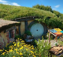 Hobbit Hole by acolleau