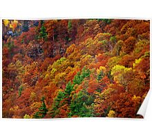 House on a Hill - Autumn Catskill Mountains Poster