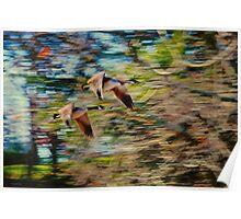 Departing Geese Poster