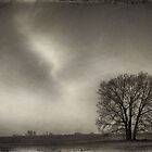 Wet Plate Series II by hankfrentzphoto