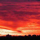 Evening dusk in New York City  by Alberto  DeJesus