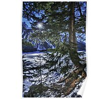 Wall art winter scene snow in the forests and frozen lake of the Alps - color photo - I colori dell'inverno Poster