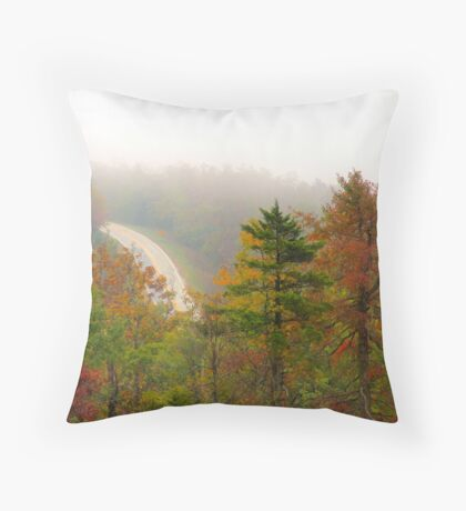 Foggy Morning Road,  Arkansas Ozarks Throw Pillow