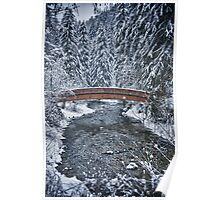 Bridge over river in the forest with snow - fine art color - Il ponte nel bosco Poster