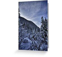 Winter scene snow in the forests of the Alps - color photo - Foresta di Neve Greeting Card