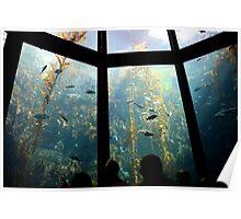 The Deep Sea Poster