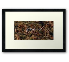 Scenic Flight Framed Print