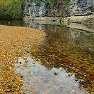 Buffalo National River,  Pruitt Arkansas, USA. by NatureGreeting Cards ©ccwri