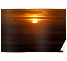 Color wall art sunset on the Pacific Ocean with pellicans - La dove sparisce il Sole Poster