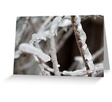 A Layer of Ice Greeting Card