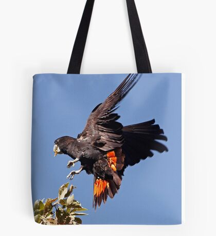 Red-tailed Black Cockatoo - A Splash of Red Tote Bag