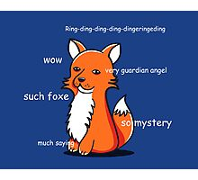 Such Foxe Photographic Print
