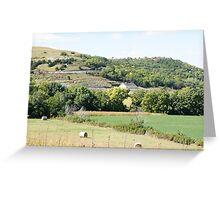 Flint Hills Greeting Card