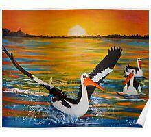 Pelicans of Marlo Poster