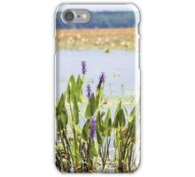 Florida Beauty 5 iPhone Case/Skin