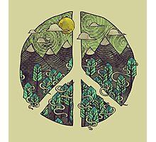 Peaceful Landscape Photographic Print