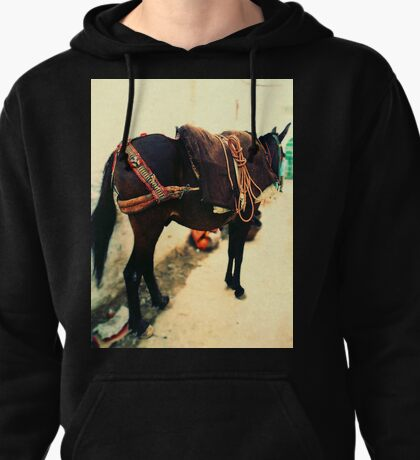 Moroccan Donkey Pullover Hoodie