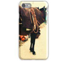 Moroccan Donkey iPhone Case/Skin