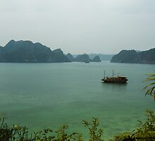 Monkey Island at Halong Bay by vishwadeep  anshu
