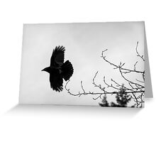 Crow in flight naturalistic animal black and white wall art - Sono soltanto il Corvo Greeting Card