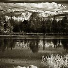 Swamp lake with dramatic snowy mountains Pacific Northwest landscape fine art monochrome wall art decoration - Montagne Innevate by visionitaliane
