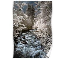Creek off Cle Elum river infrared naturalistic landscape fine art photography - Mondo incantato - 2 Poster