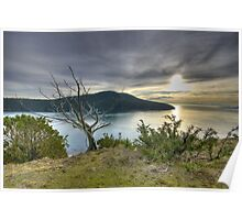 Color Fine art naturalistic HDR sunset bay tree on Puget Sound - Fuori dal Tempo Poster