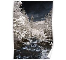 Creek off Cle Elum river infrared naturalistic landscape fine art photography - Mondo incantato Poster