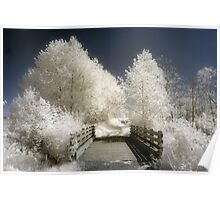 Infrared landscape photography bridge and trees - A passeggio fra le fate Poster