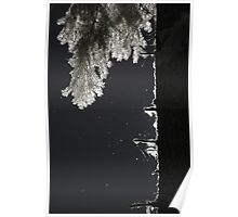 Tree silhouetted by sunlight in infrared black and white minimalist naturalistic modern wall art - Contorni Poster