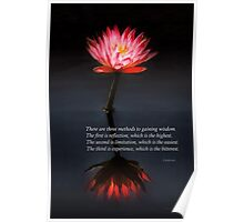 Inspirational - Reflection - Confucius Poster