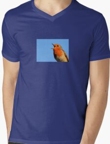 Robin Redbreast Mens V-Neck T-Shirt