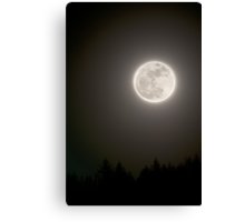 Full moon in the night sky with silhouette of trees night photography fine art color wall art - Guarda che Luna... Canvas Print