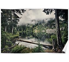 Landscape color photography fallen log in lake in the Cascade mountains nature of the Pacific Northwest wall art - ...e nuvole Poster