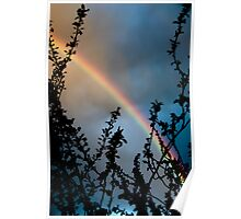 Rainbow against clouds at sunset sky color wall art - Arcobaleno Poster