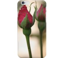 Two Of A Kind iPhone Case/Skin
