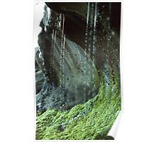 Sandstone formation and moss with rivulet of water close up nature shot - Formando la Terra Poster