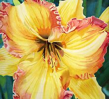 Day Lily by corystill