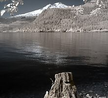 Photo infrared landscape Baker Lake great North West - Lo specchio del Gigante by visionitaliane