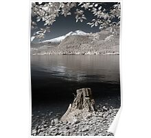 Photo infrared landscape Baker Lake great North West - Lo specchio del Gigante Poster