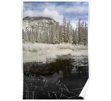 Landscape naturalistic infrared fine art - L'Inverno d'Estate Poster