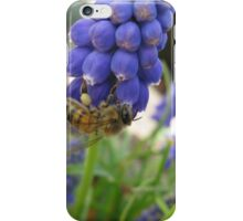 Busy Little Bee iPhone Case/Skin